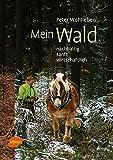 ISBN 3800179822