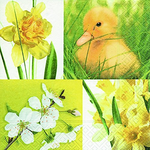 20 Servietten Frühling Küken Ostern Narzisse Märzenbecher Kirschblüte 33x33 cm