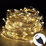 InteTech®10m 100 LEDs Micro silver Wire Waterproof LED String Lights Indoor Outdoor Starry String Lights Lighting DIY Decoration for Bedroom Jars Garden Camping Festive Wedding Christmas Party (Warm White-USB)