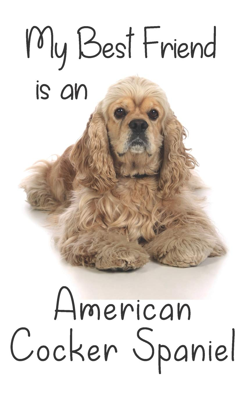 "My best Friend is a American Cocker Spaniel: 8"" x 5"" Blank lined Journal Notebook 120 College Ruled Pages (Best Friends)"
