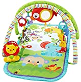 Fisher Price CHP85 - Palestrina della Foresta