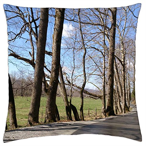 iRocket - Smokey Mountains Cades Cove - Throw Pillow Cover (24