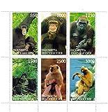 Scimmie menta foglio di francobolli per i collezionisti di francobolli e gli amanti degli animali che caratterizzano diverse altre specie di scimmia - Inguscezia / 6 francobolli - Stampbank - amazon.it