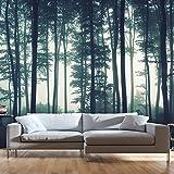 murando - Fototapete Wald 400x280 cm - Vlies Tapete - Moderne Wanddeko - Design Tapete - Wandtapete - Wand Dekoration - Wald Natur Nebel c-B-0223-a-a