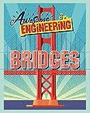 Bridges (Awesome Engineering)