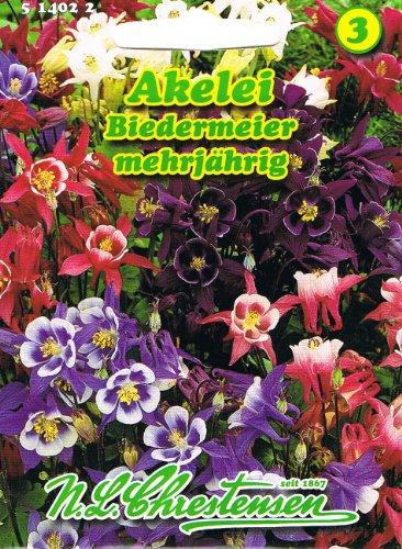 Akelei Biedermeier farbenprächtige Schmuck- und Schnittstaude 'Aquilegia caerulea' hybrida nana...