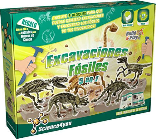 Kit de excavación dinosaurio