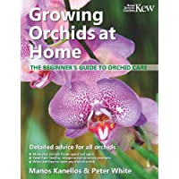Growing Orchids at Home: The beginner's guide to orchid care