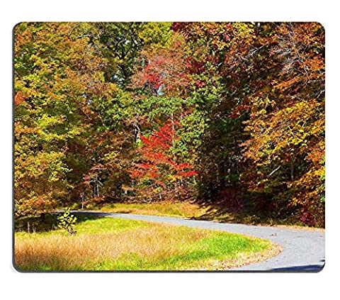 liili Tapis de souris en caoutchouc naturel souris US National Arboretum en automne Washington DC Road Affiche encadrée par arbres en automne coloré dans le Bosquet dense