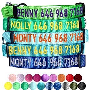 Collier de dressage et de sécurité Blueberry Pet pour chiens - 12 couleurs