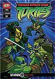 Teenage Mutant Ninja Turtles: Season 1, Part 1 [DVD] [Region 1] [US Import] [NTSC]