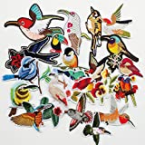 Chenkou Craft 20pcs Random Embroidered Birds Assorted Iron-on or Sew-on Embroidered Patch Motif Applique Woodpecker Hummingbirds Swallows Parrot