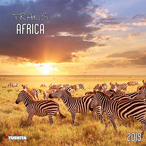 Africa 2020: Kalender 2020 (Wonderful World)