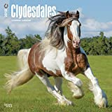Clydesdales 2018-18-Monatskalender: Original BrownTrout-Kalender [Mehrsprachig] [Kalender] (Wall-Kalender)