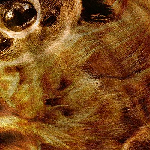 Bär Tier Natur Tier Wald Tier Damen S-2XL Muskelshirt | Wellcoda Rot