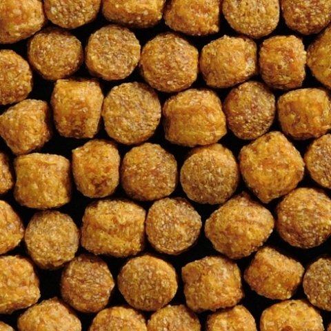 1-kg-coppens-pond-pellets-poissons-detang-6-mm-futt-lets-canard