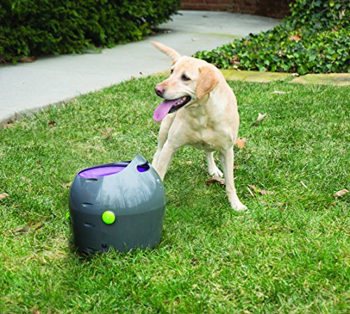PetSafe Automatic Ball Launcher Dog Toy, Interactive Tennis Ball Throwing Machine for Dogs, Water Resistant 6