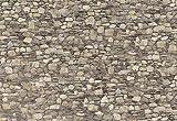 Eurographics DW-RFI1005 Stone Wall, Dekowall 254 x 366 cm