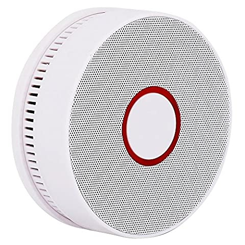Six Foxes Smoke Detector Fire Alarm with Photoelectric Sensor, 10
