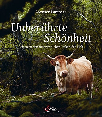 Unberührte Schönheit: Reisen zu den ursprünglichsten Kühen der Welt