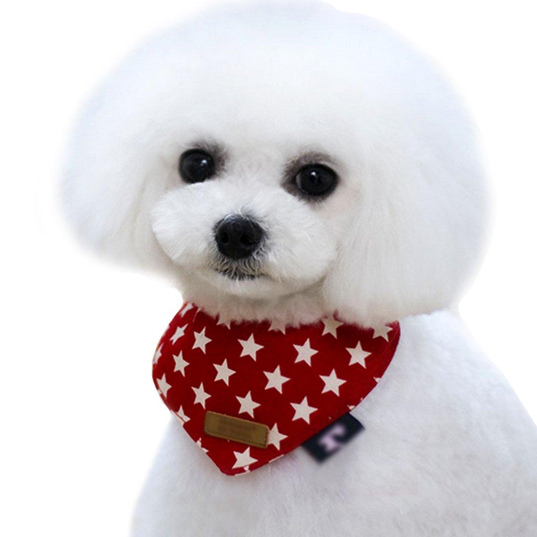 bandana perros