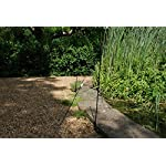defenders all-in-one kit with 10 m pond fence (protects garden ponds and pools, humane heron deterrent) Defenders All-in-One Kit with 10 m Pond Fence (Protects Garden Ponds and Pools, Humane Heron Deterrent) 61Lua5ReZUL