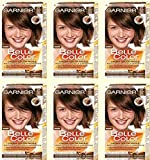6x Garnier Belle Color 21–Hellbraun Gold Haarfärbung