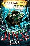 Jinx's fire: Book 3 (Wizards Apprentice)