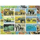 Los animales de la hoja de sellos menta mundo - 9 sellos emitidos en 1999 República de Madagascar / Mint y sin montar