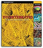 Invertebrates: A Quick Reference Guide (Oceanographic Series)