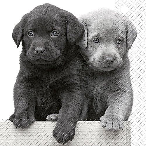Stewo 3Ply Tovaglioli di carta stampata, Lasko cucciolo design