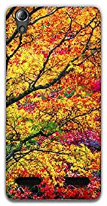 The Racoon Grip Autumn hard plastic printed back case / cover for Lenovo A6000