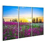 islandburner Bild Bilder auf Leinwand 3 teilig Blumenwiese Poster, Leinwandbild, Wandbilder