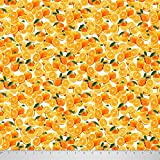 Soimoi 20 GSM Reine Seide Stoff Orange Gedrucktes 44 Zoll