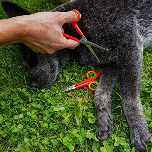Hundeschere – Set mit 2 Scheren zur Fellpflege für Hunde – Fellscheren aus Edelstahl mit abgerundeter Spitze - 3