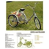 RMAN Dreirad Für Erwachsene Erwachsenendreirad...