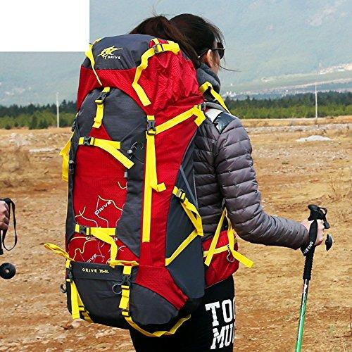 All'aperto grande capacità Zaini/ trekking zaino/Coppie borse all'aperto/Zaino da viaggio-A D