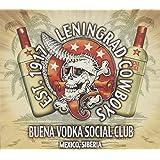 Buena Vodka Social Club-Limited