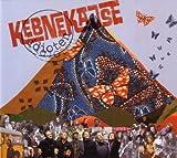 Songtexte von Kebnekajse - Idioten