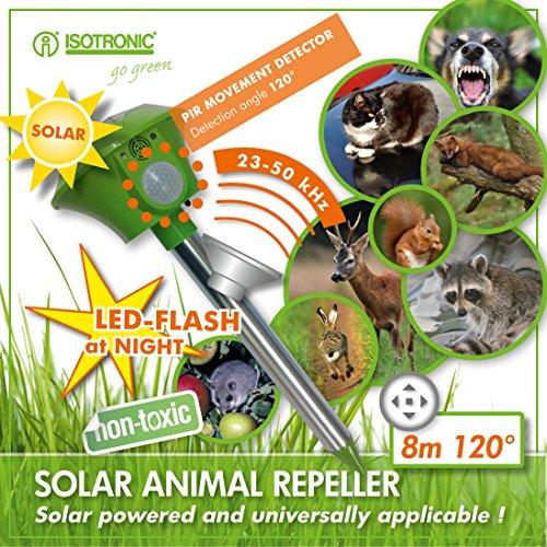 ISOTRONIC Ultraschall Tiervertreiber mit Bewegungsmelder & BLITZ gegen Vögel Katzen Marder und Waschbären
