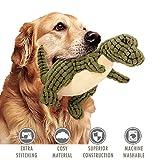 ubest Hundespielzeug aus Plüsch, Dinosaurier Plüsch-Stoffspielzeug, Monster Quietschspielzeug für Hunde, Grün