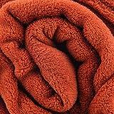 Bestlivings Kuscheldecke Flauschige Tagesdecke ca. 280g/m² Vielseitig einsetzbare Microfaser-Decke, in Vielen Verschiedenen Trendigen Farben erhältlich (150cm x 200cm/terracotta - Ochre)