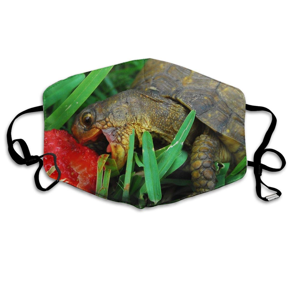 Daawqee Máscara de Boca, Turtle Eat Strawberries Green Grass Unisex Creative Mascarilla Washable Safety 100% Polyester Comfortable Breathable Health Half Face Masks