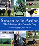 Structure in Action: The Makings of a...