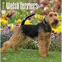 Welsh Terrier 2018 - 18-Monatskalender mit freier DogDays-App: Original BrownTrout-Kalender [Mehrsprachig] [Kalender] (Wall-Kalender)
