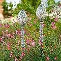 Pötschke Ambiente Beetstecker Pinienzapfen, 2er-Set von Pötschke Ambiente - Du und dein Garten