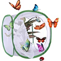 Yeelan Butterfly Habitat Collapsible Bug Catcher Net Mesh Insects Plant Cage Terrarium Pop-up for Kids/Toddler Catching Crickets/Firefly/Caterpillars/Ladybird/Fish etc (30 * 30 * 30cm)