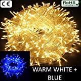 #10: The Kingdom Store Rice String Lights Warm White Color 10M For Decorative Purposes 10M To 100M Fairy Leds With 8 Pattern Operation