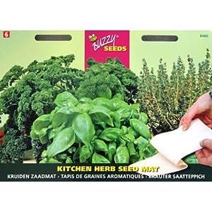 Tapis de graines plantes aromatiques