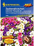 Calibrachoa Zauberglöckchen Kabloom Romantik Mix Pillensaatgut